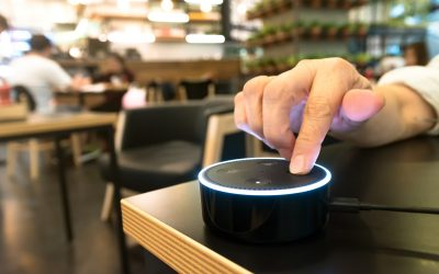The Demand for Voice Control
